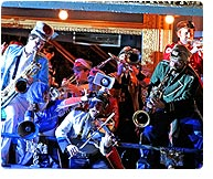 Mucca Pazza, Safety Fifth (Electric Cowbell Records)