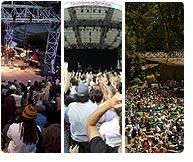 Festival Tastemakers (Grand Performances/Stern Grove/SummerStage)